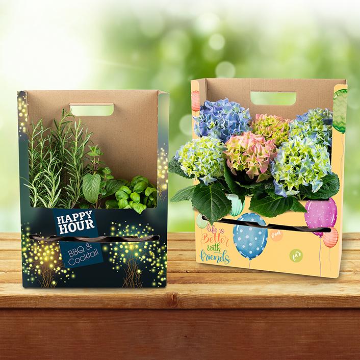 Pflanzenverpackung Tray