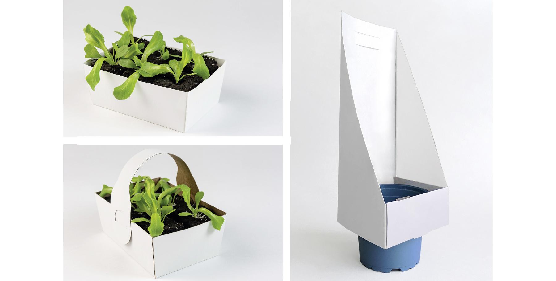 Pflanzenverpackung