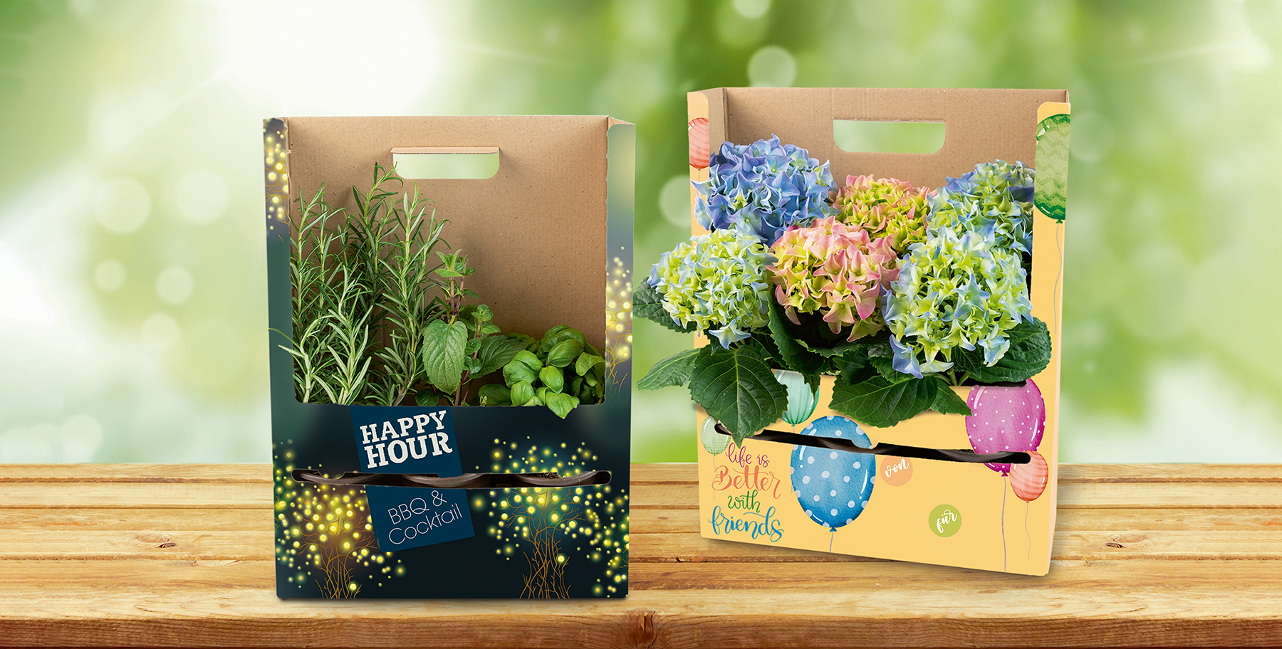 Pflanzenverpackung POS Tray