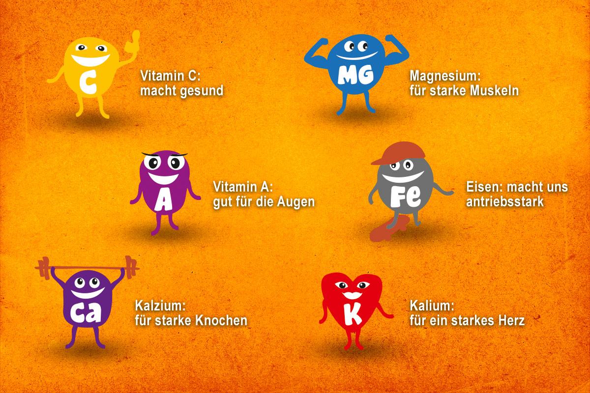 Vitaminie Kleine Gartenforscher